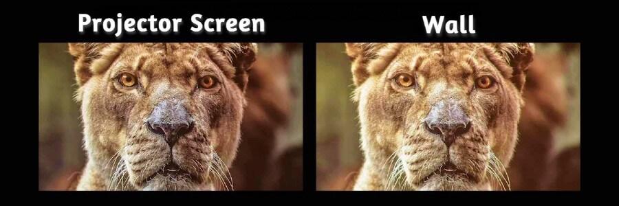 Projector Screen vs Wall